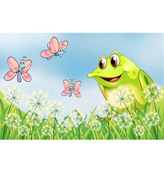 Frog and butterflies in the garden vector image vector image