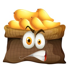 Mango bag with face vector image vector image