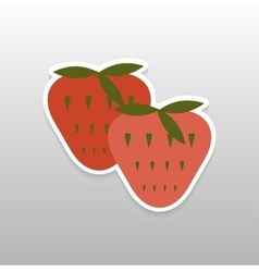 Sticker flat berries vector