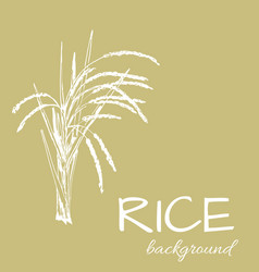 background rice1eps vector image