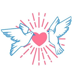 Pigeon And Love Burst vector image vector image