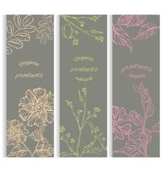 Set floral flowering decorative brochures vector image vector image