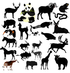 Collection of animals vector