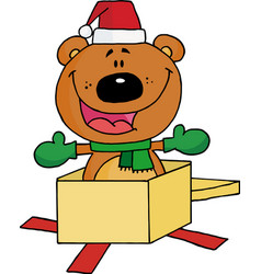 Bear Popping Out Of A Gift Box vector image vector image