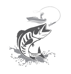 King mackerel vector