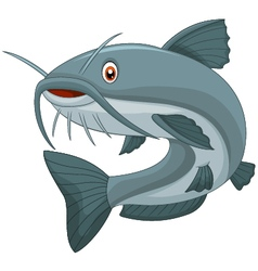 Cartoon catfish vector