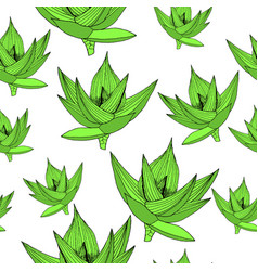 seamless floral pattern background with vector image