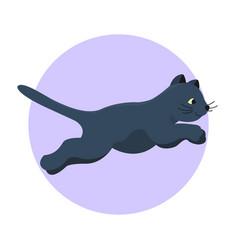 cat breed cute kitten black pet portrait fluffy vector image