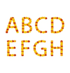 Autumn leaves alphabet letters vector image vector image