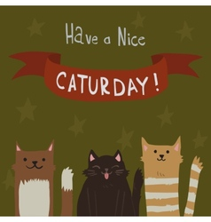 Cats Saturday Postcard vector image vector image
