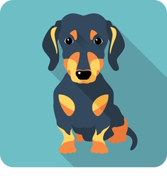 Dog dachshund sitting icon flat design vector