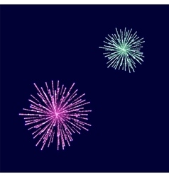 Fireworks light up the sky vector