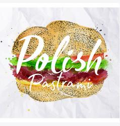 polish pastrami burger vector image vector image