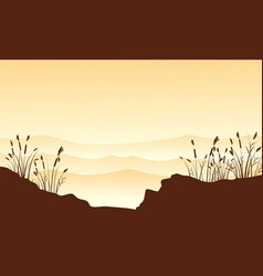silhouette of desert with course grass landscape vector image