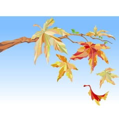 Branch of maple with autumn leaves vector