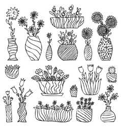 Hand drawn indoor plants in a pots gloxinia vector