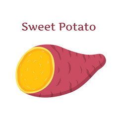 Brown batat sweet potatoorganic health vegetable vector