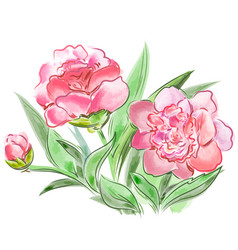 Meadow flowers peonies isolated on white vector