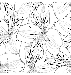 Seamless pattern in alstroemeria with contours vector