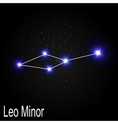 Leo Minor Constellation with Beautiful Bright vector image