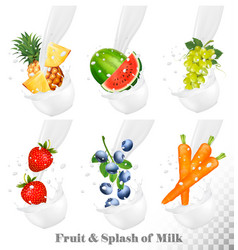 Set of different milk splashes with fruit nuts vector