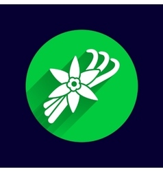 Vanilla flower and vanilla pods logo vector