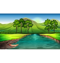 A river with an alligator vector image vector image