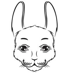 Bunny muzzle vector