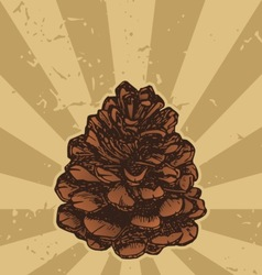 Pinecone on grunge vector