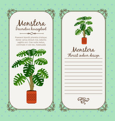 vintage label with monstera plant vector image