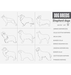 Dog breeds Shepherd dog set icon Flat style vector image