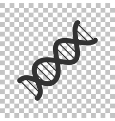 The dna sign dark gray icon on transparent vector