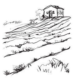hand drawn of a fields vector image vector image
