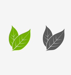 Tea leaves icon set green and gray isolated vector