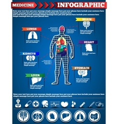 INFOGRAPHIC MEDICINE vector image