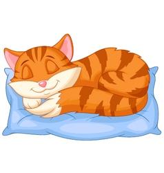 Cute cat cartoon sleeping on a pillow vector image