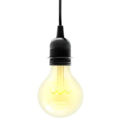 Electric light bulb vector image vector image