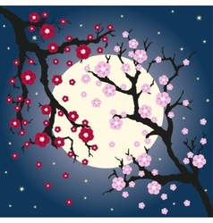 oriental cherry and moon vector image