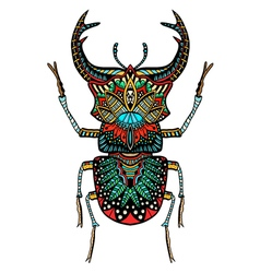 color beetle vector image