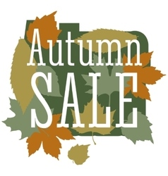 Autumn sale and discount cartoon banner vector