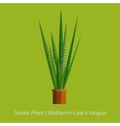Flat of indoor homeplant snake vector
