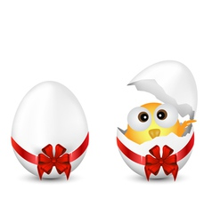 Easter Eggs and Chicken vector image