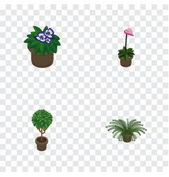 isometric plant set of plant flowerpot tree and vector image vector image