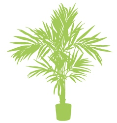 Room plant silhouette vector image vector image