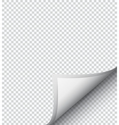 White checkered sheet of paper vector