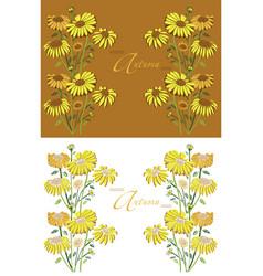 frame autumn sunflowers vector image