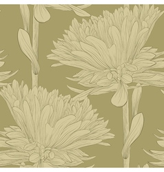 Seamless background with flowers aster vector
