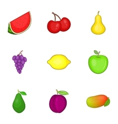 Different kinds of fruit icons set cartoon style vector image