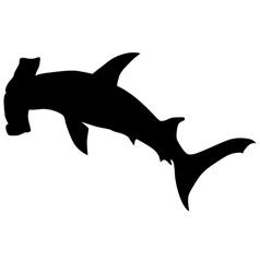 hammerhead shark vector image