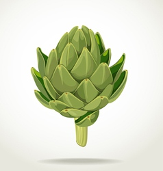 Green fresh useful eco friendly artichoke vector